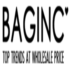 Baginc.com coupons & promo codes