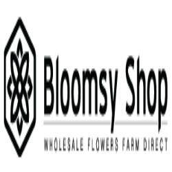 Bloomsy Shop coupons & promo codes