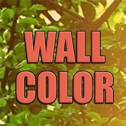 Wall Color Signs coupons & promo codes